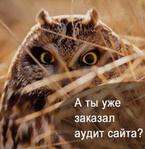 """Баннер акции """"Экспресс аудит"""""""